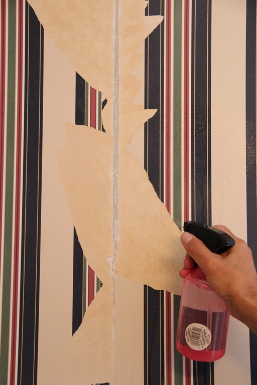How to remove wallpaper like a Pro 512x768