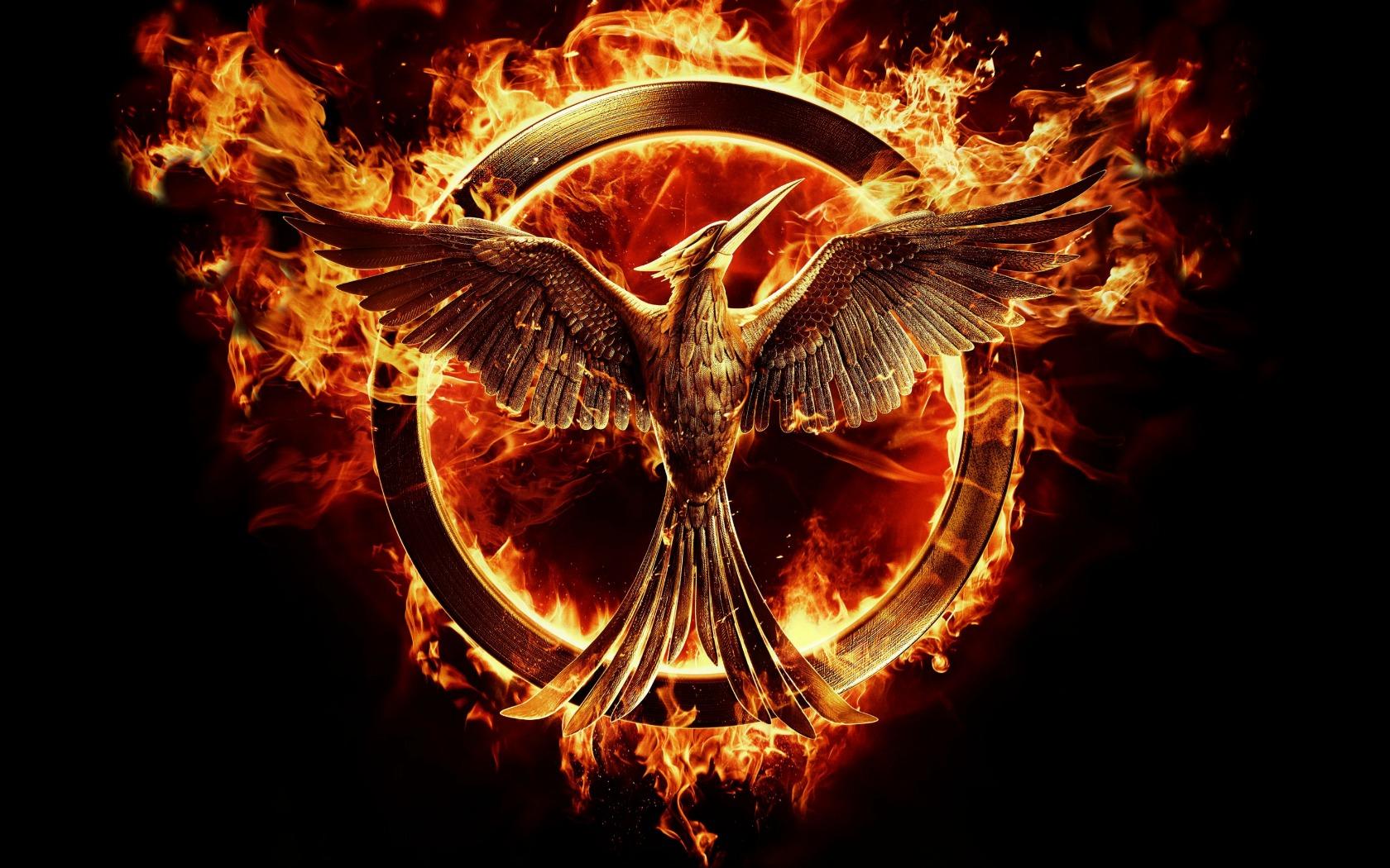 Mockingjay The Hunger Games wallpaper HD 1680x1050