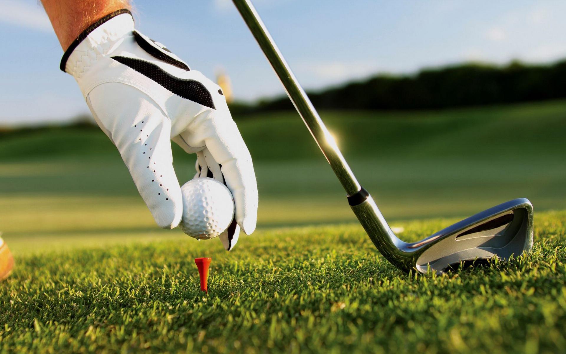 Golf Ball On Grass Macro Wallpaper HD 5774 Wallpaper High 1920x1200