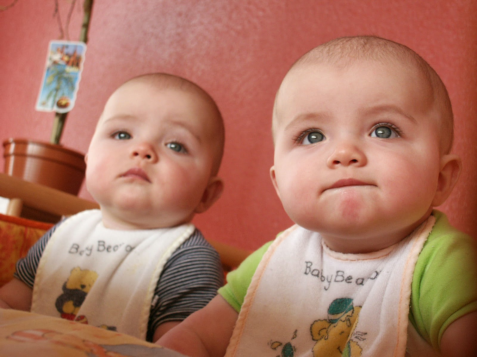 почему цветут новорожденные дети фото