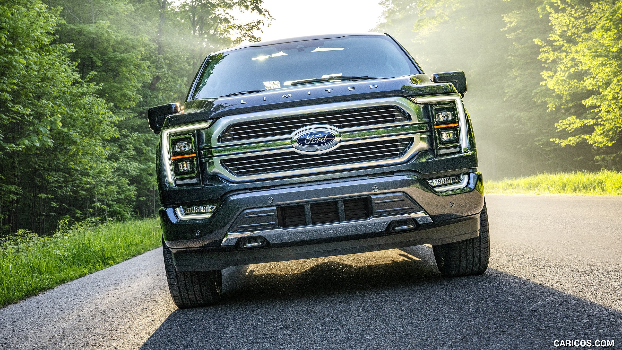 2021 Ford F 150 Limited Color Smoked Quartz   Front HD 2560x1440