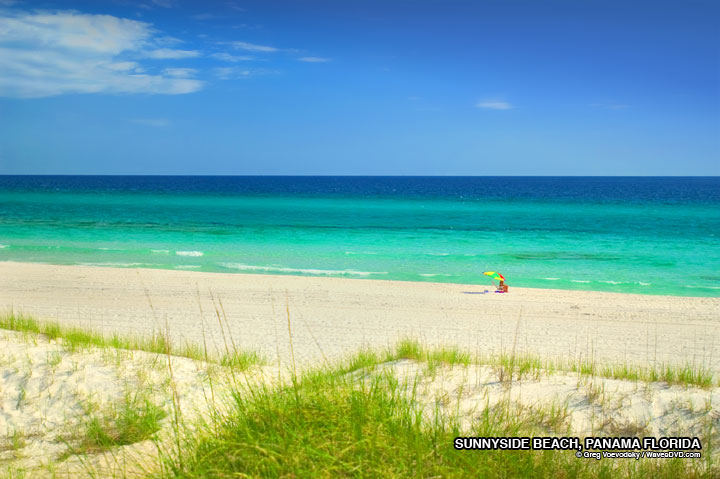 FLORIDA BEACHES FLORIDA BEACH PHOTO FREE Desktop background nature 720x479