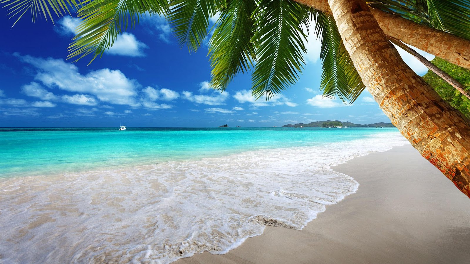 Beach Live Wallpaper   Android Apps on Google Play 1600x900