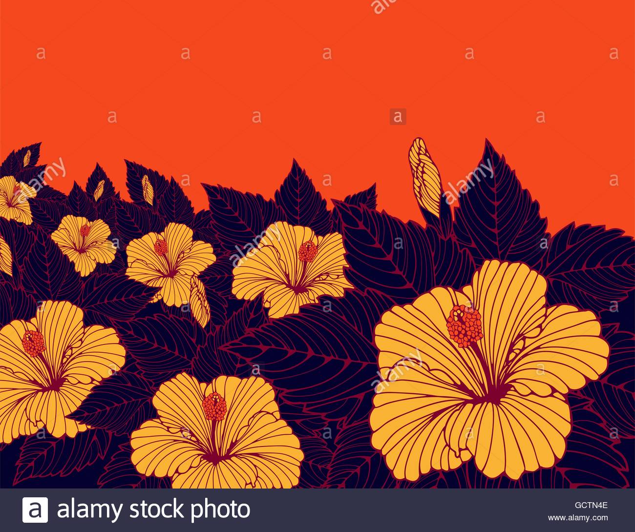 a wallpaper poster background with a field of hibiscus flowers in 1300x1089