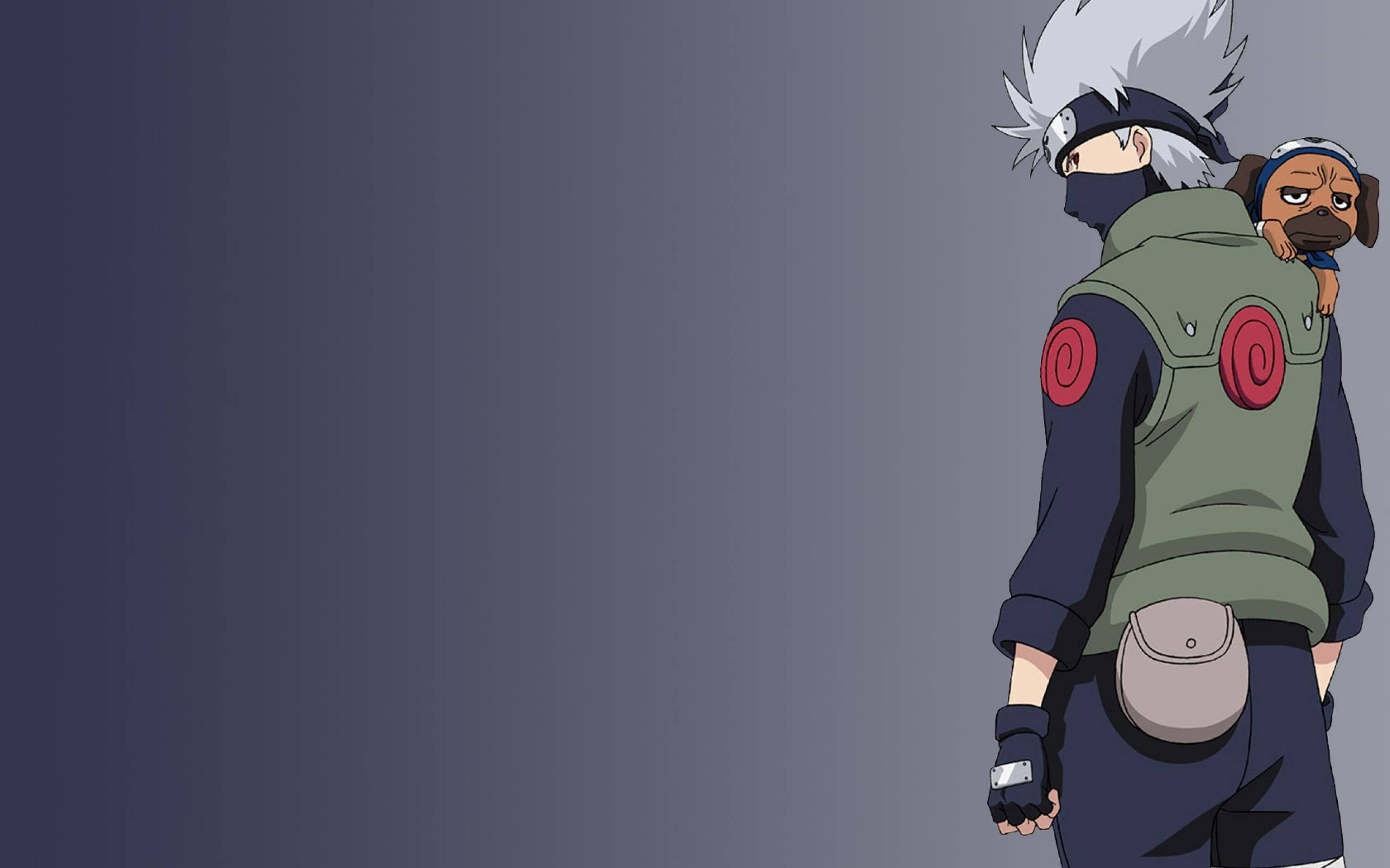 Kakashi Hatake wallpaper   Naruto Picture 2560x1600