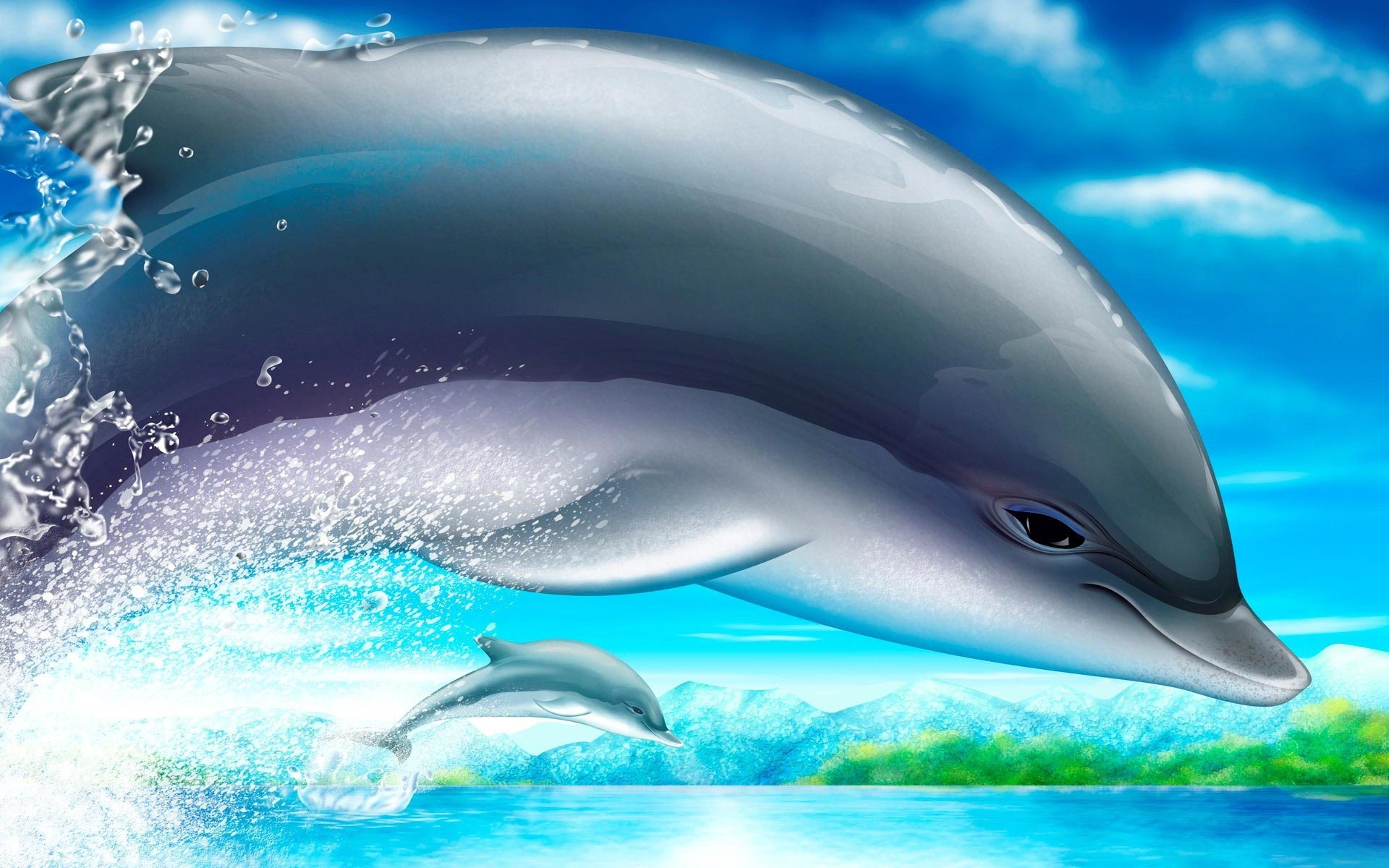 Cute Dolphin Wallpaper   HD Wallpapers 1920x1200