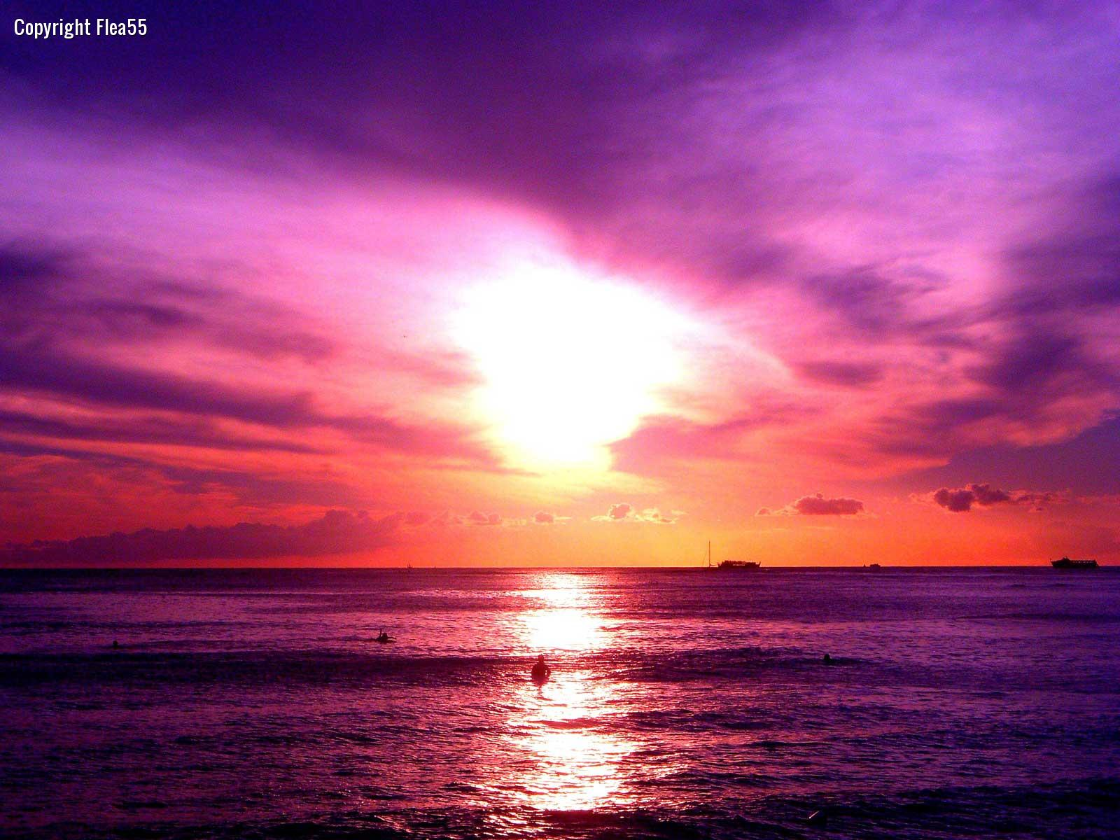 Purple Sunset On The Beach 8741 Hd Wallpapers in Beach   Imagescicom 1600x1200