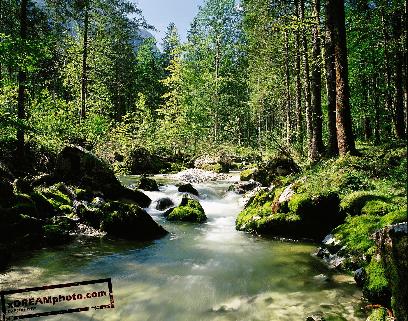 Free Nature Wallpaper And Screensavers