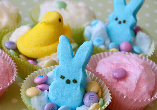 Peeps Candy Wallpaper Cotton candy easter cupcakes 500x350