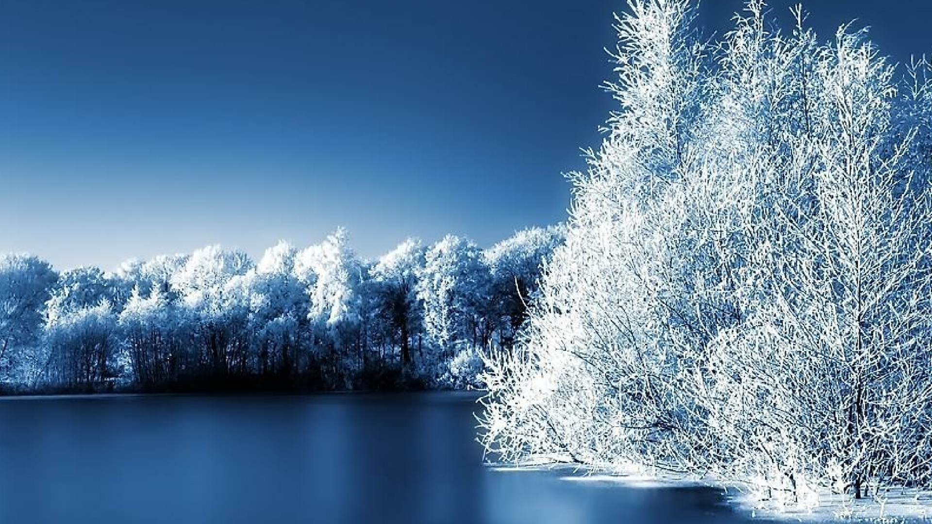 High Definition Wallpapers High: Winter Scenery High Definition Wallpapers