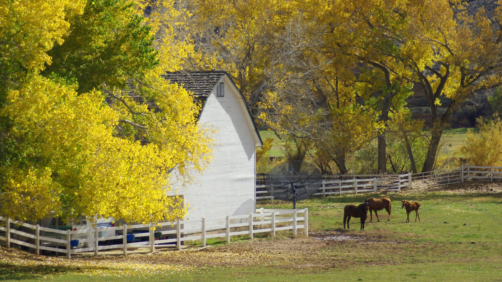 Autumn Country Farm 1920x1080