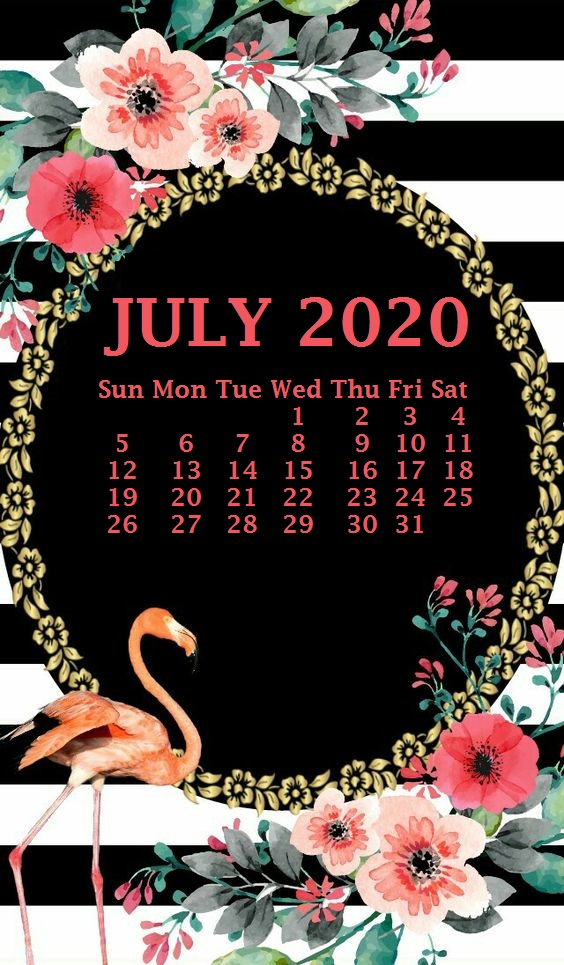 iPhone 2020 Calendar Wallpaper Calendar 2020 564x965