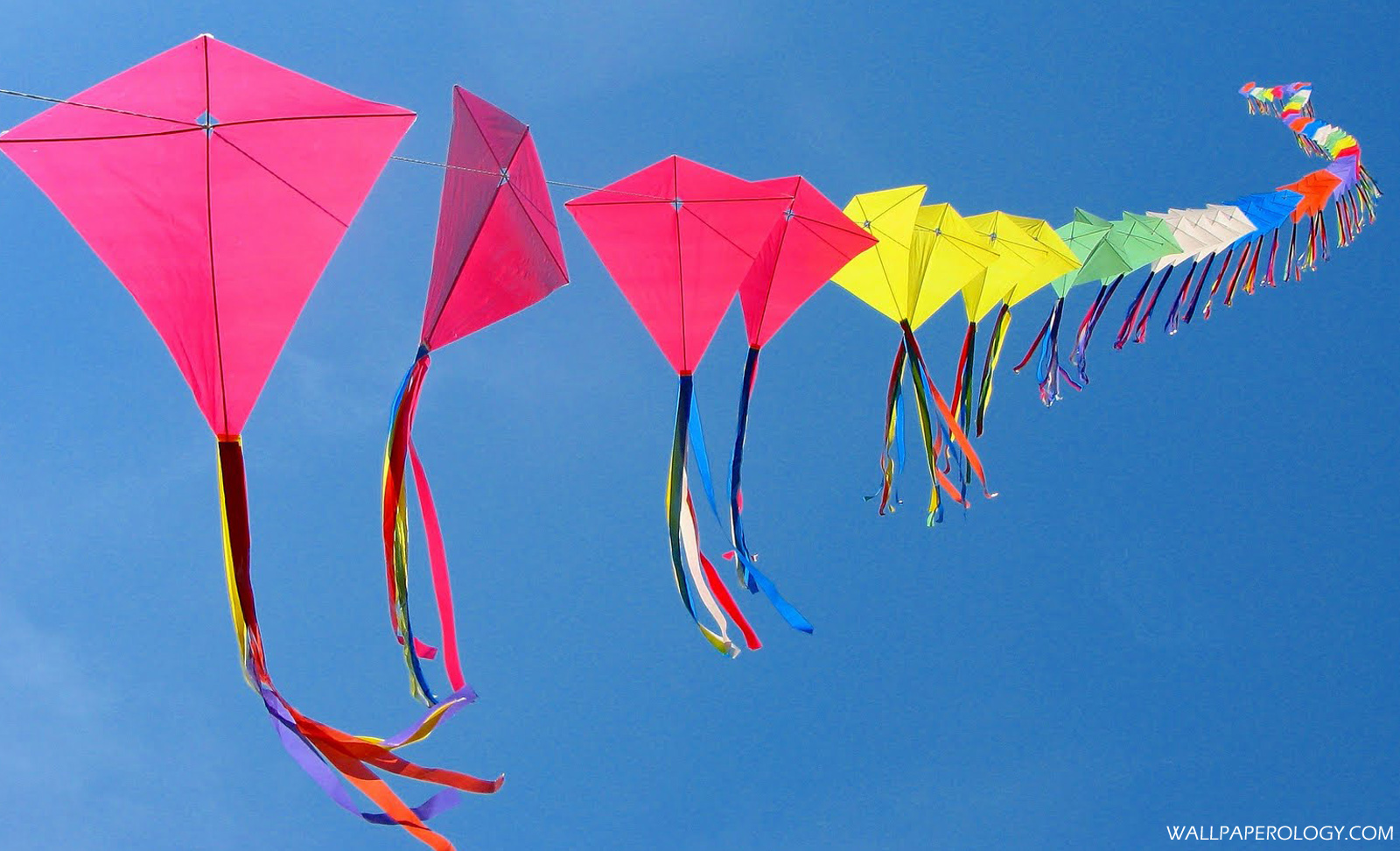 Kite Festival HQ Wallpaper 1600x972