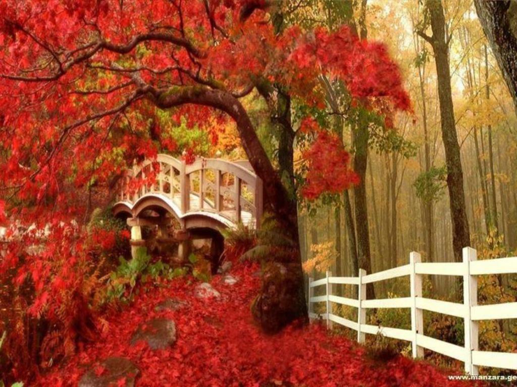 fall screensavers and wallpaper Autumn Wallpaper   Download 1024x768