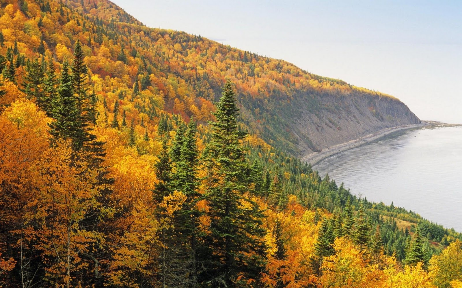 Canada Fall Desktop HD Walls Find Wallpapers 1600x1000