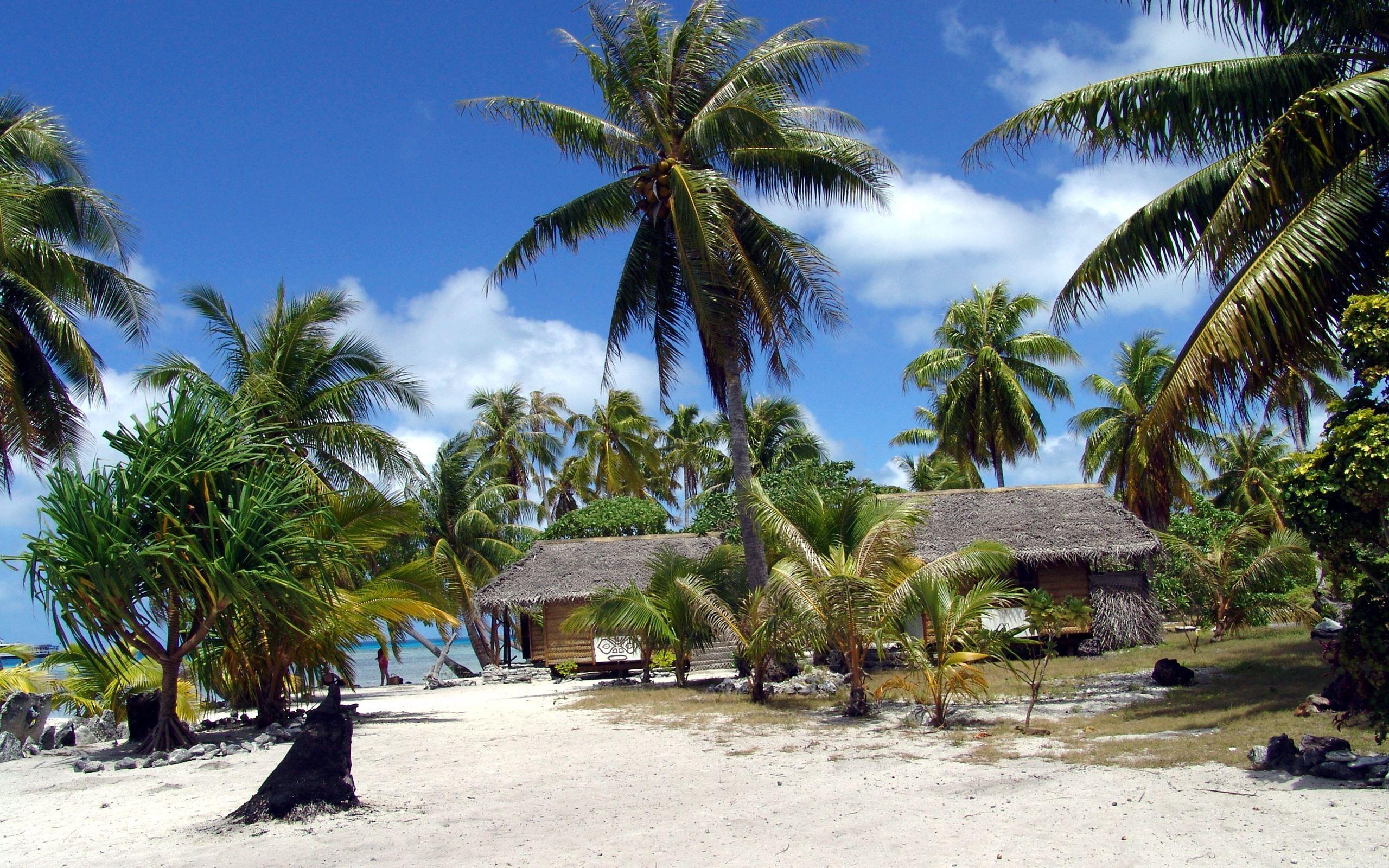 Tropical Island desktop wallpaper 2560x1600