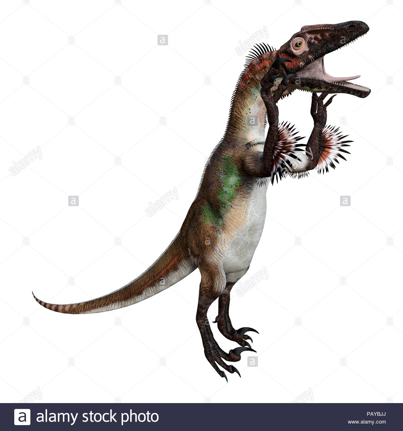 3D rendering of a dinosaur utahraptor isolated on white background 1300x1390