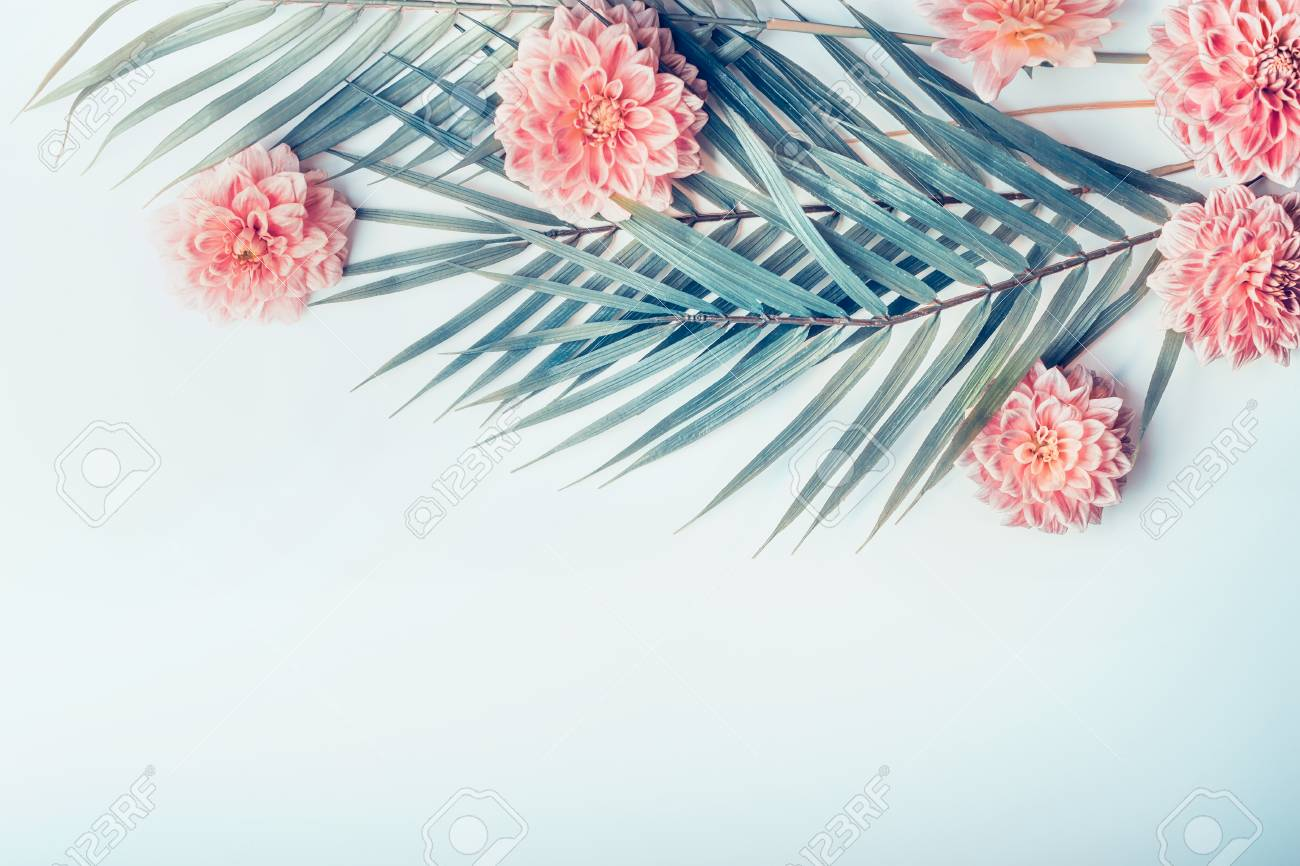 Trends For Cute Pastel Pastel Palm Leaves Aesthetic Wallpaper Desktop Photos Polish your personal project or design with these tropical leaves transparent png images, make it even more personalized and more attractive. trends for cute pastel pastel palm