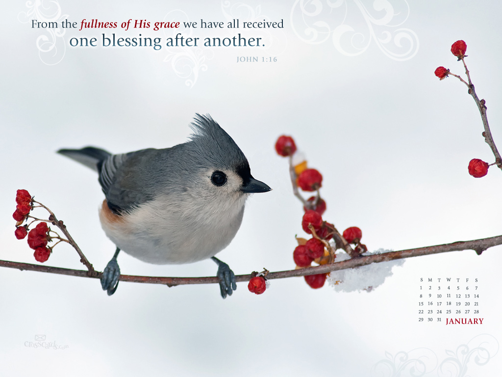 Fr fr free january 2017 desktop wallpaper - Card Wallpapers Free January 2012 Christian Calendar Wallpapers