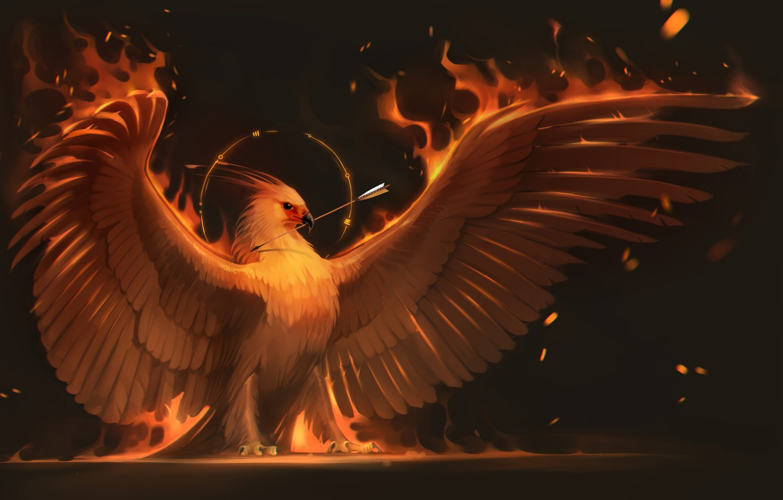 Wallpaper fire bird wings art arrow Phoenix phoenix images 1332x850