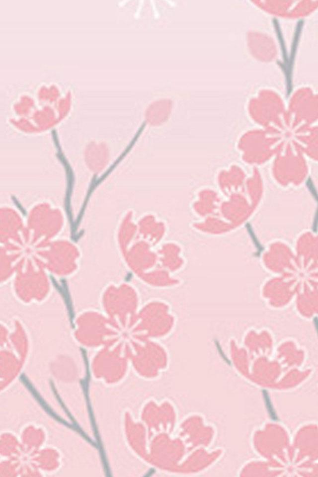 Cherry Blossom 640x960