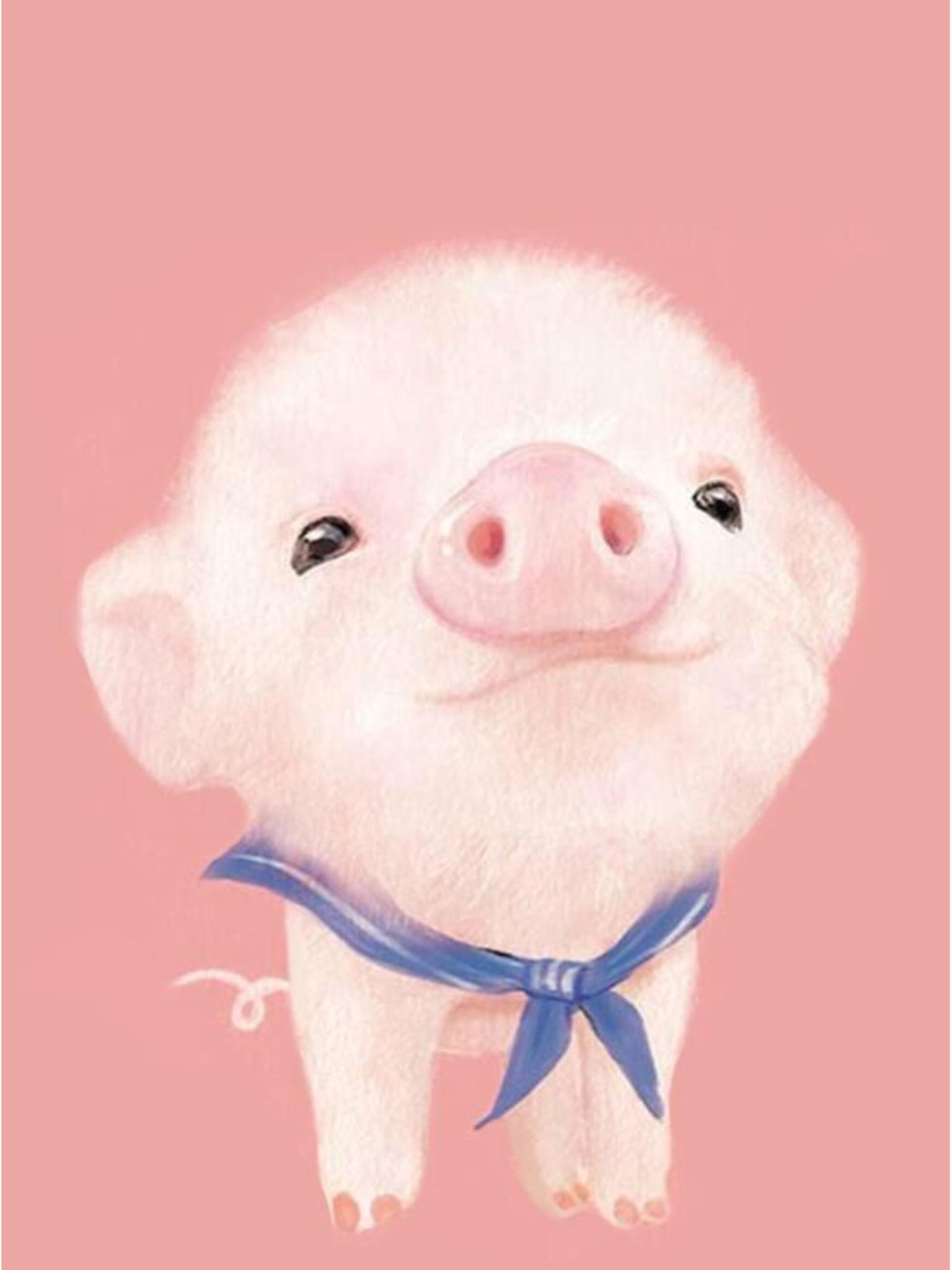 Cute pig wallpaper Wallpapers Pinterest Pig 1536x2048