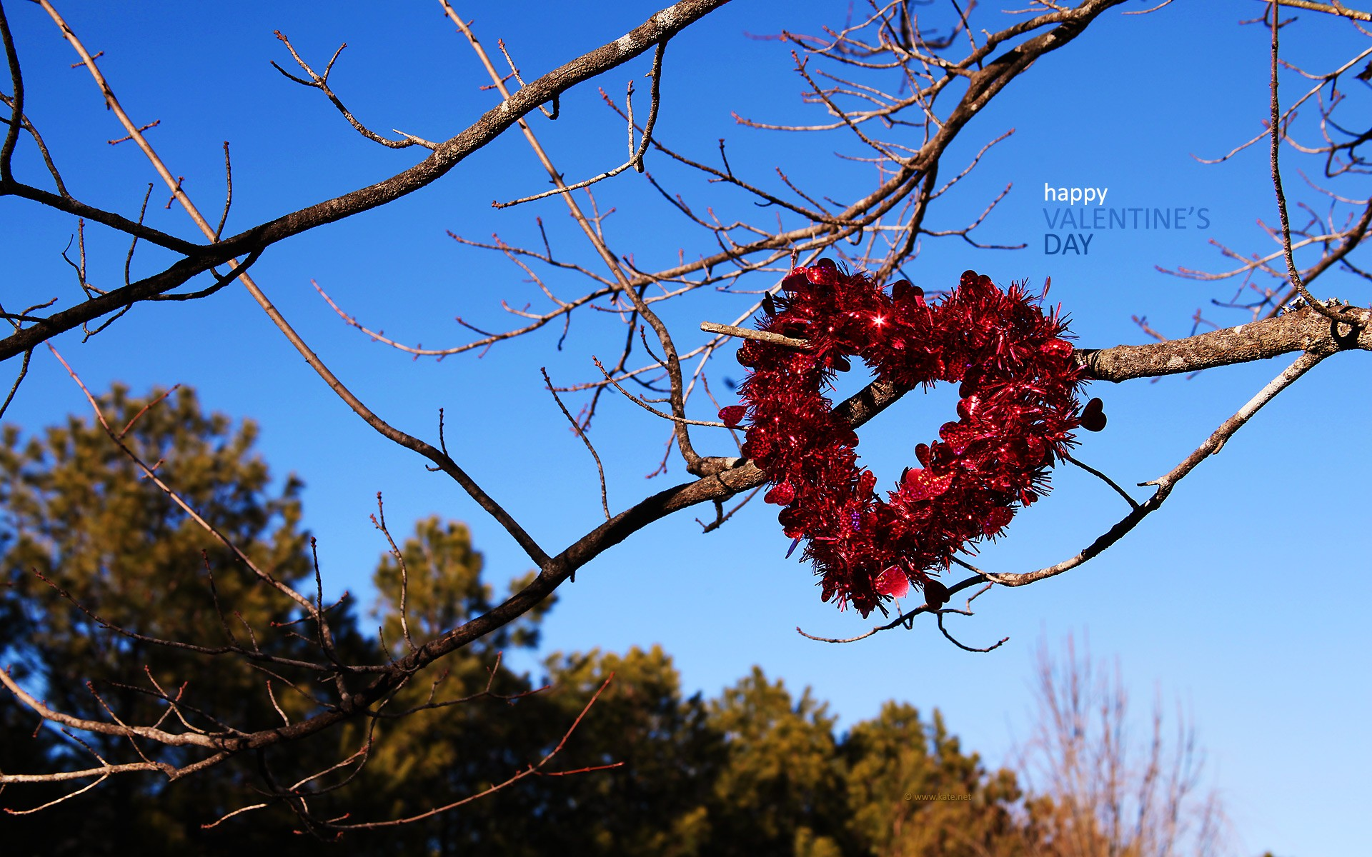 Happy Valentines Day Timeline Cover High Resolution Images 1920x1200