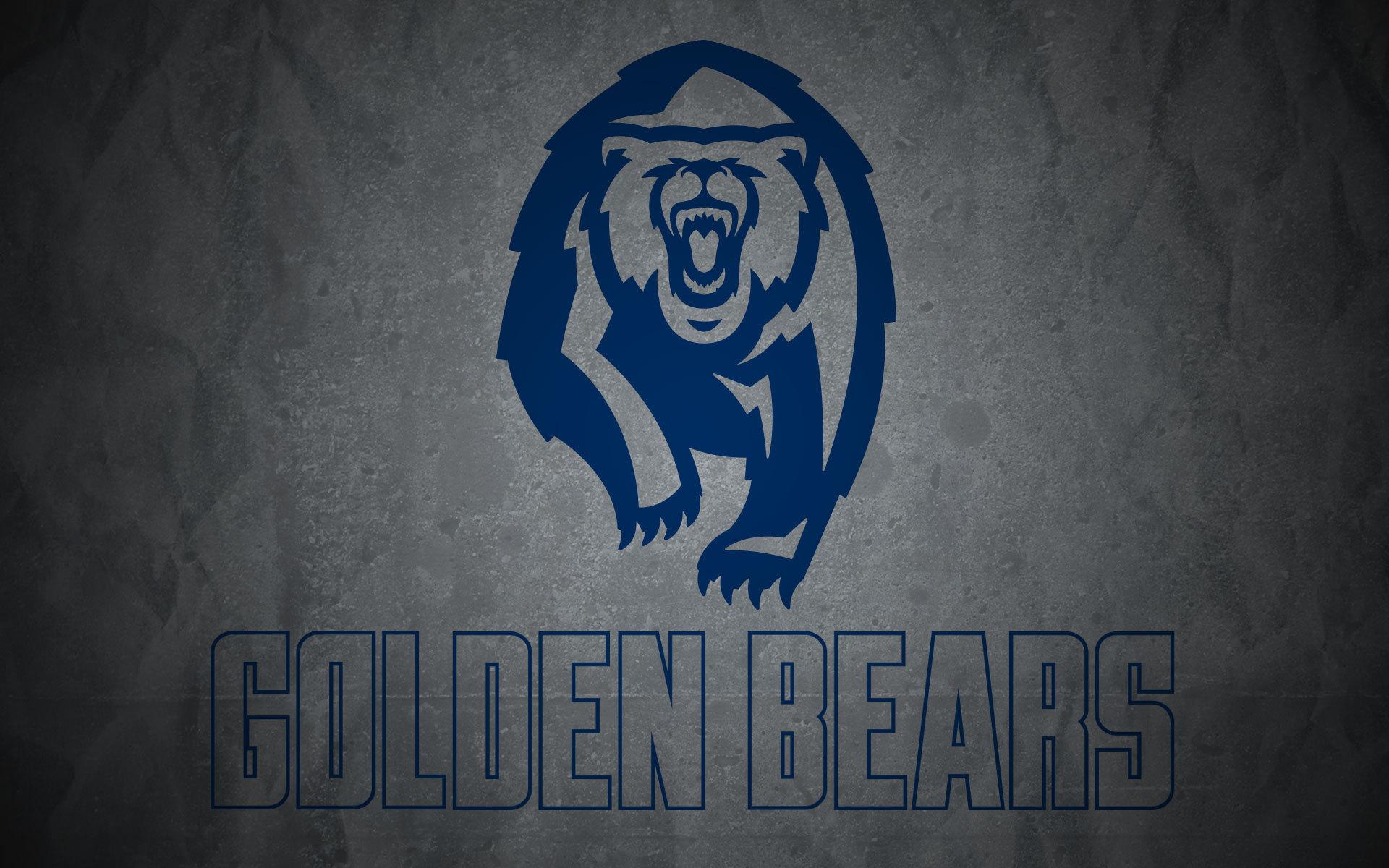 Cal bears wallpaper