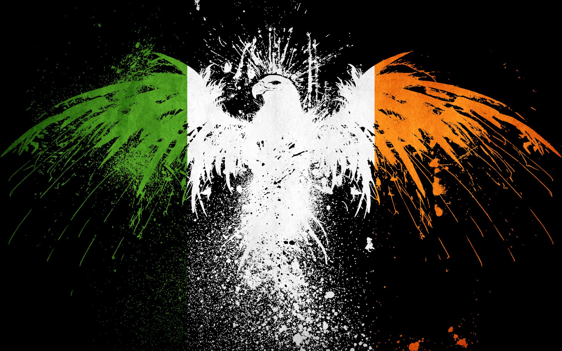 6 Flag of Ireland HD Wallpapers Background Images 1920x1200