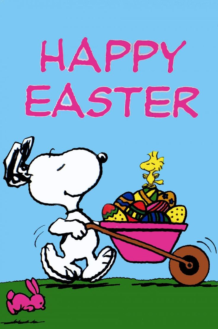 Happy Easter Snoopy spring snoopy spring wallpaper Snoopy 736x1111