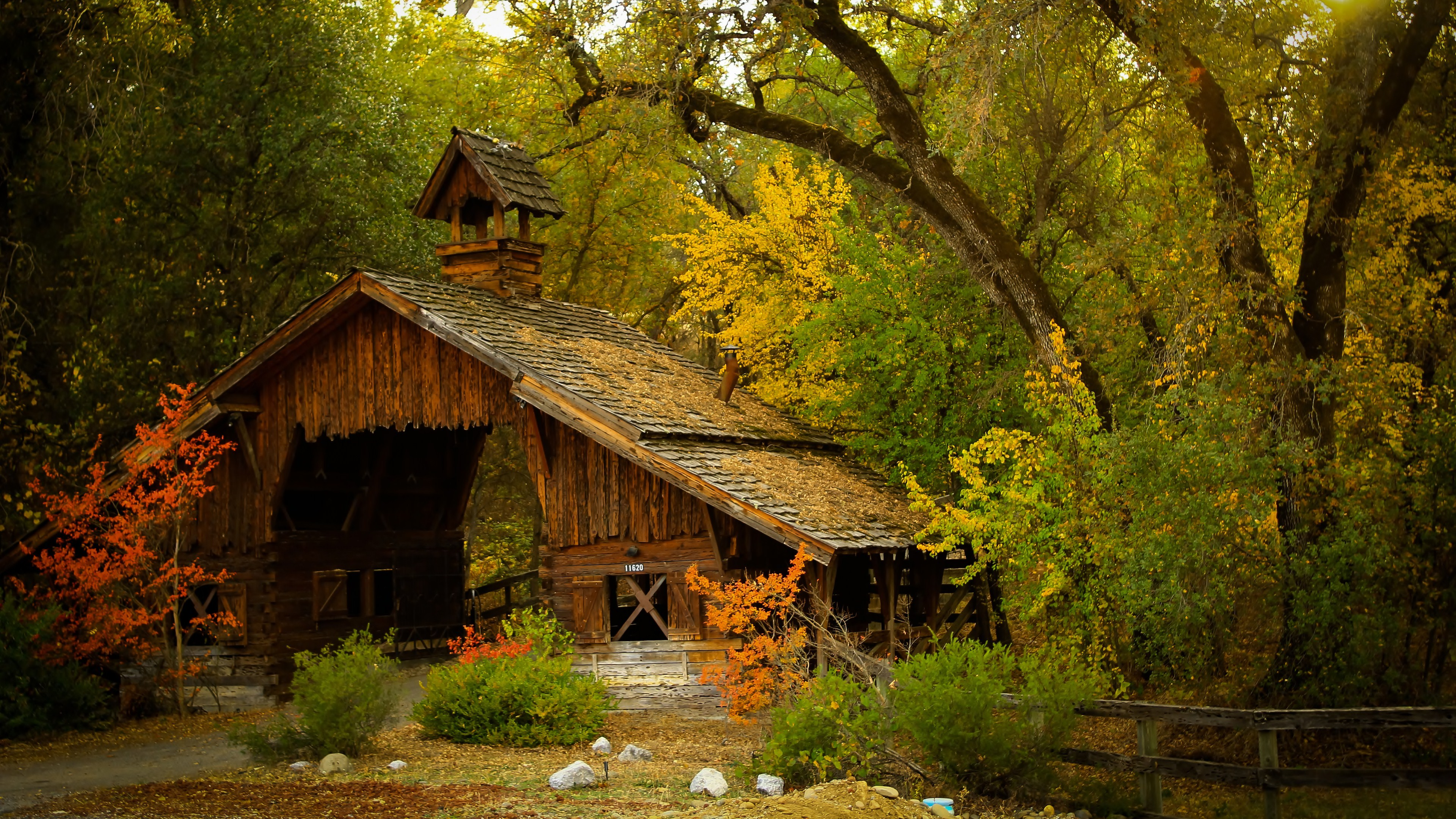 Nature Forest House HD Wallpapers - Wallpapers Z