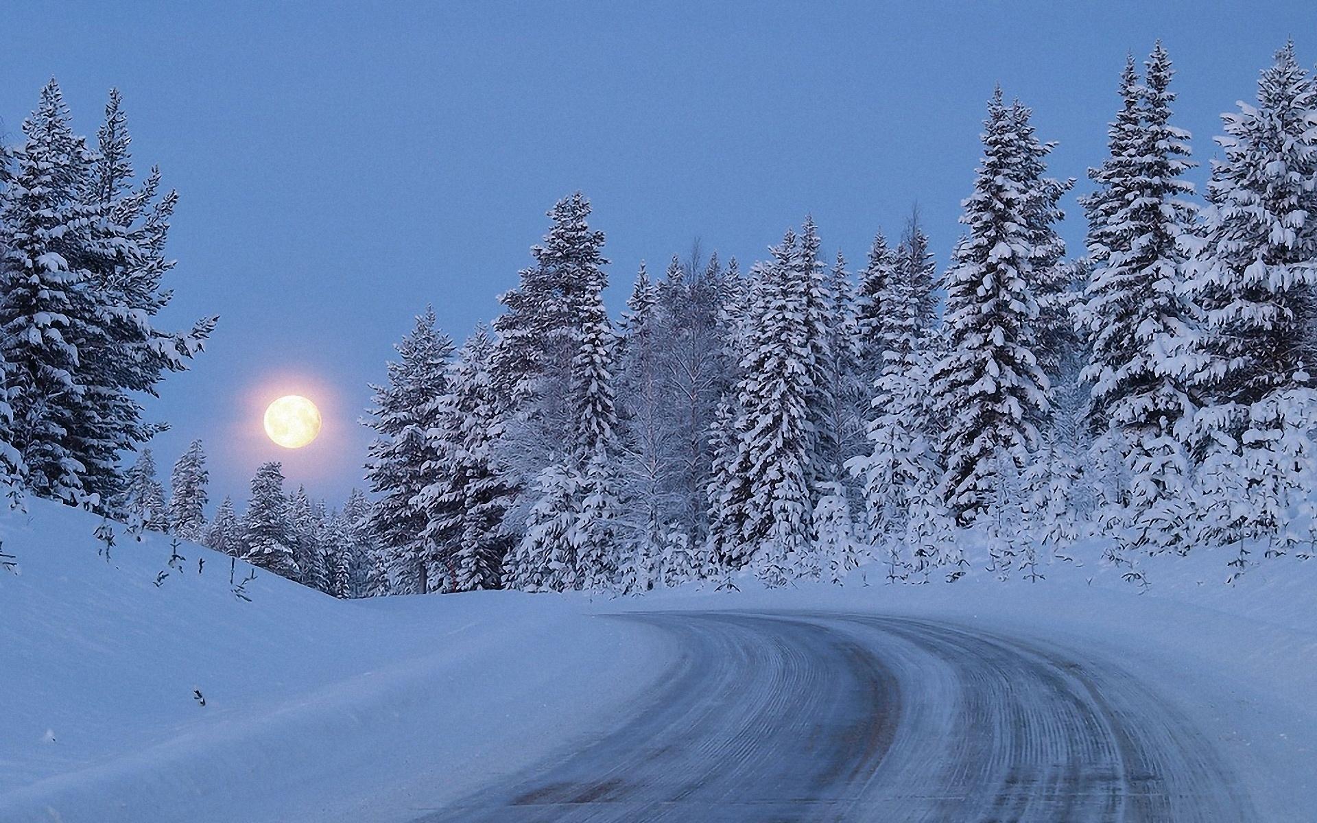 40 Snowy Moonlight Wallpaper On Wallpapersafari