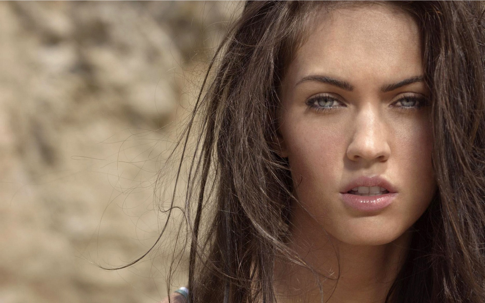 Megan Fox HD Wallpaper 1680x1050 1680x1050