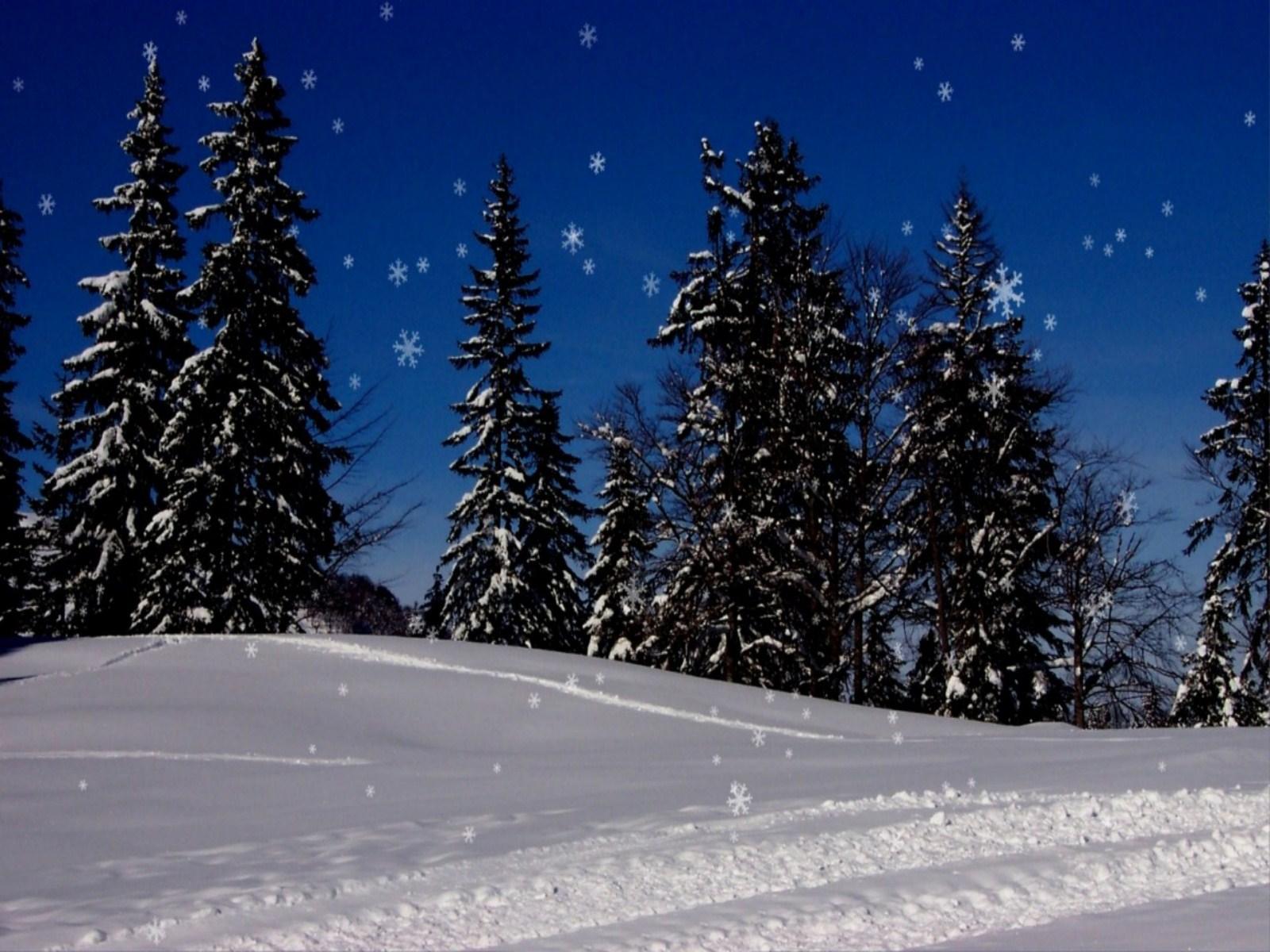 Free Christmas Wallpaper Snow Falling - WallpaperSafari