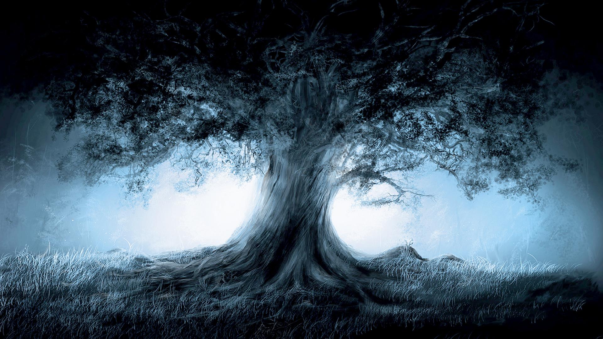 Fantasy Magic Tree Art HD Wallpapers 1920x1080