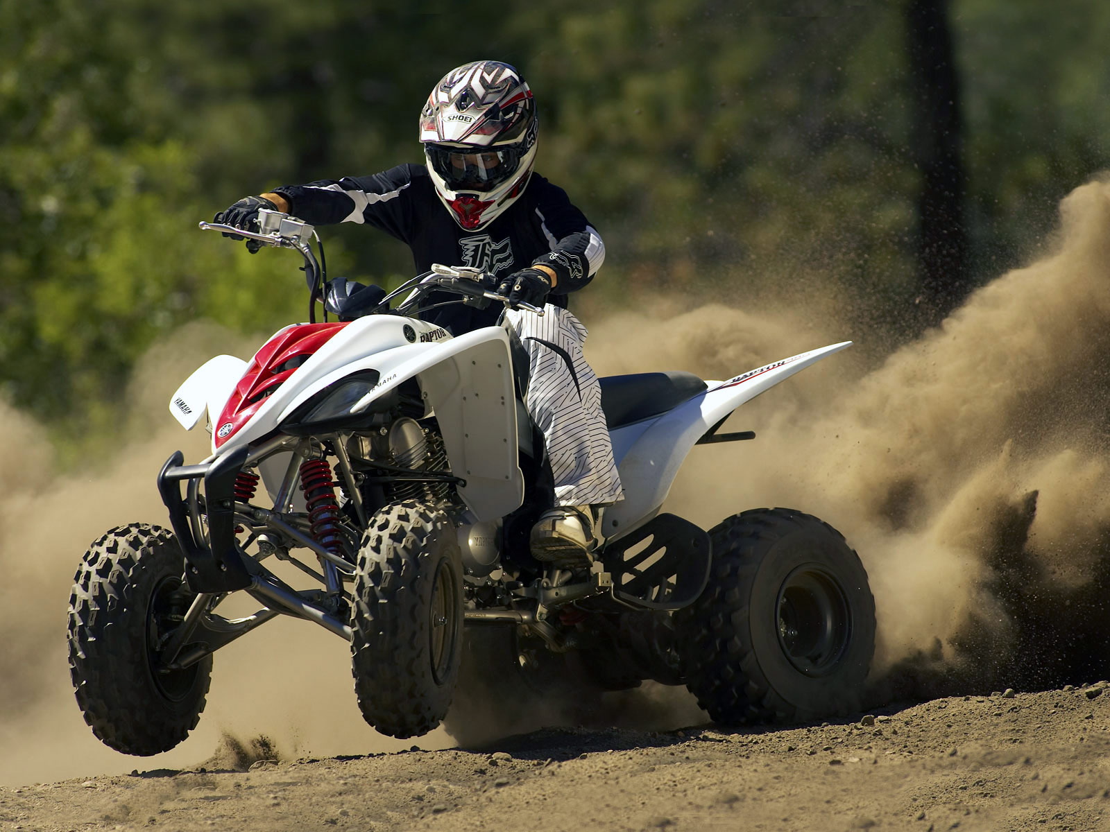 2010 YAMAHA Raptor 350 ATV Wallpapers 1600x1200