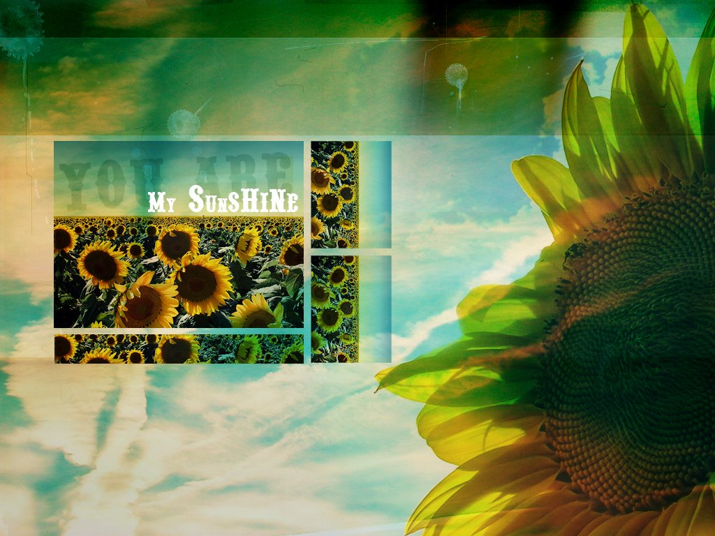 You are my Sunshine Wallpaper by draconis393 on deviantART 1024x768