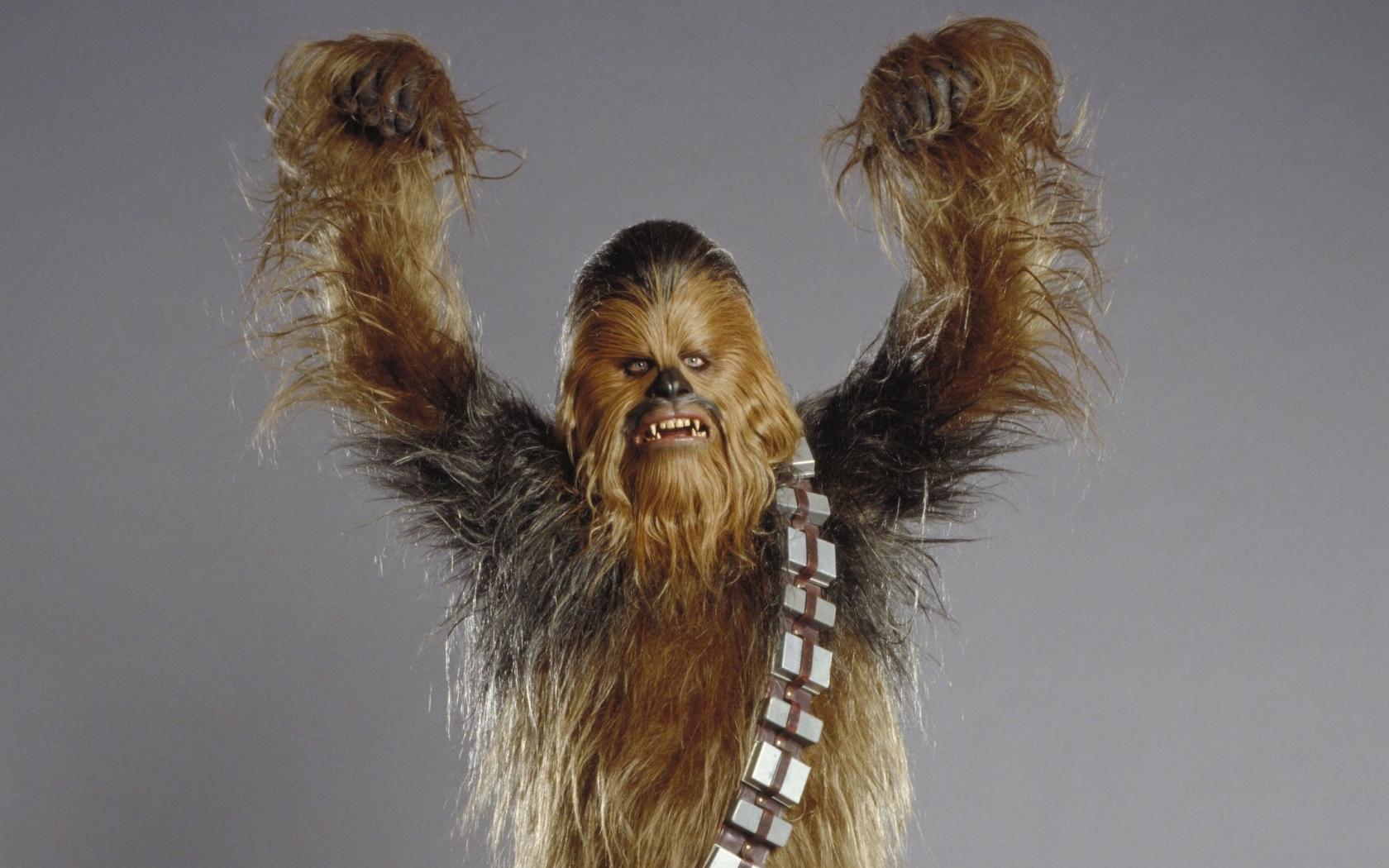 star wars chewbacca wookiee 2147x3000 wallpaper People HD Wallpaper 1680x1050