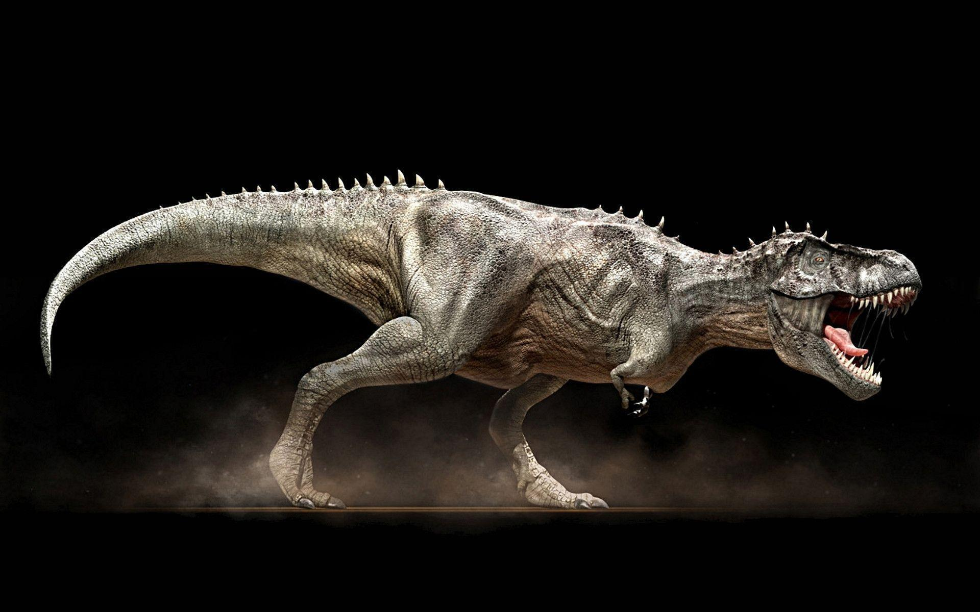 Wallpapers Tyrannosaurus Rex 1920x1200