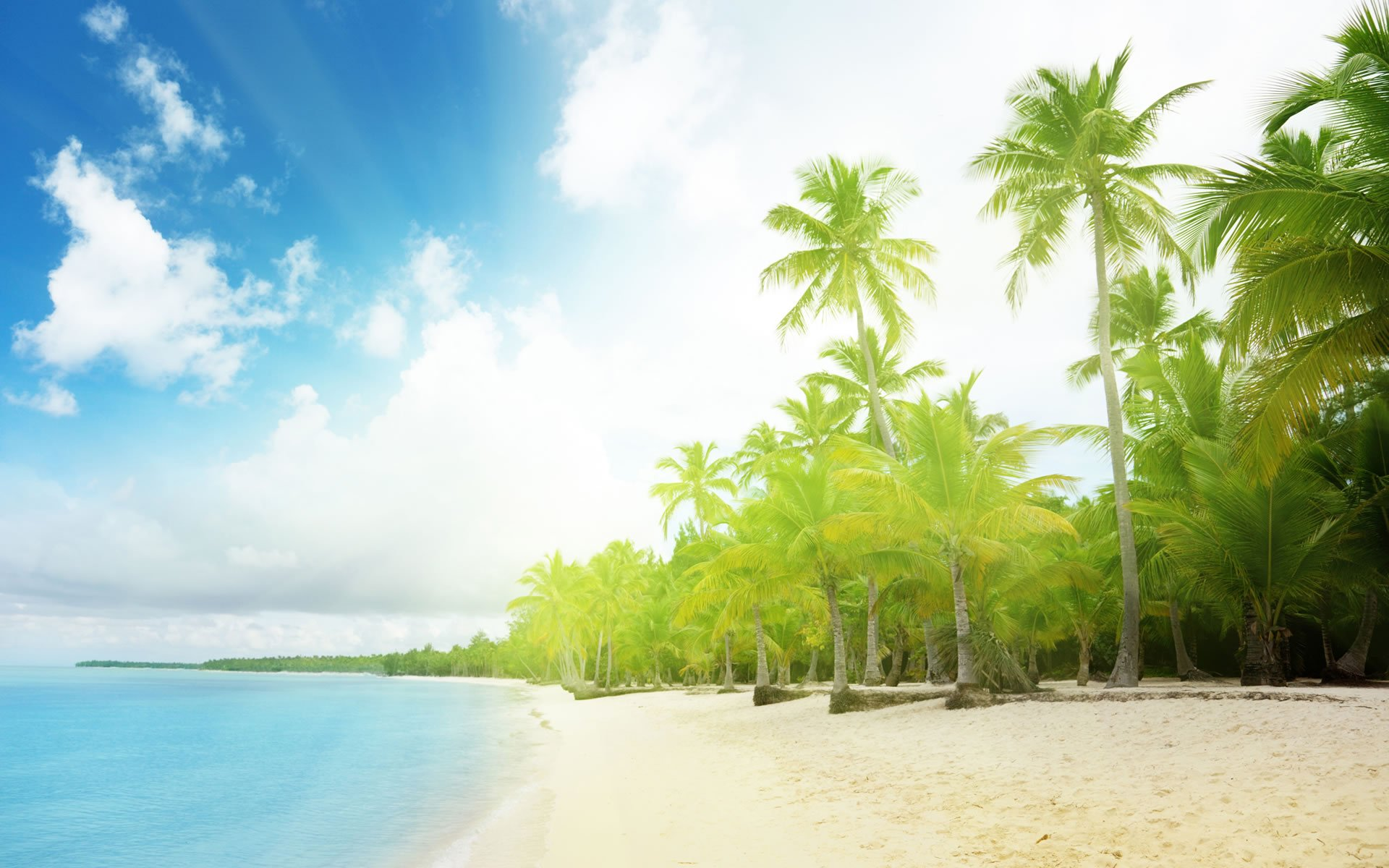wallpapers nature landscape sunny beach wallpaper background wallpaper 1920x1200