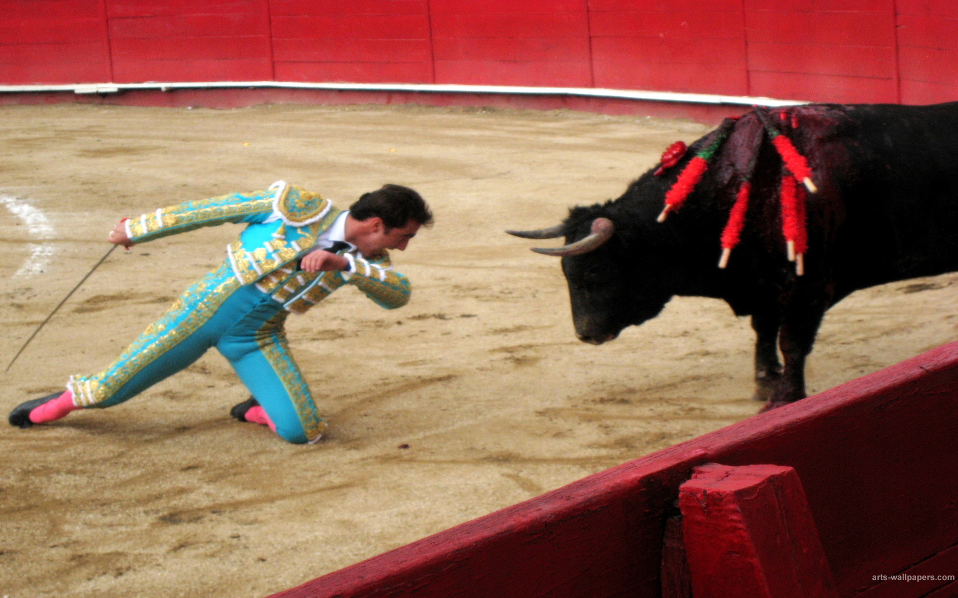 Bull Wallpapers Group With 61 Items: Bull Fighting Wallpaper