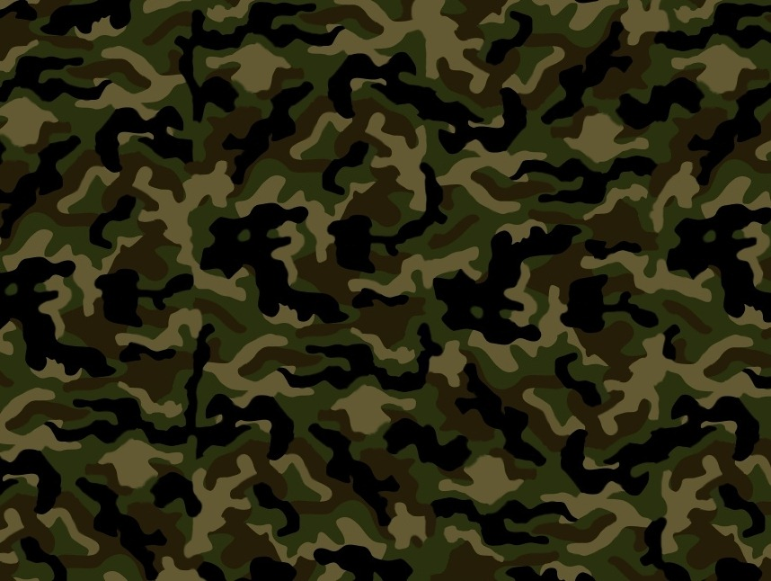 File Name 988994 Camouflage High Quality Wallpaper 988994 858x646