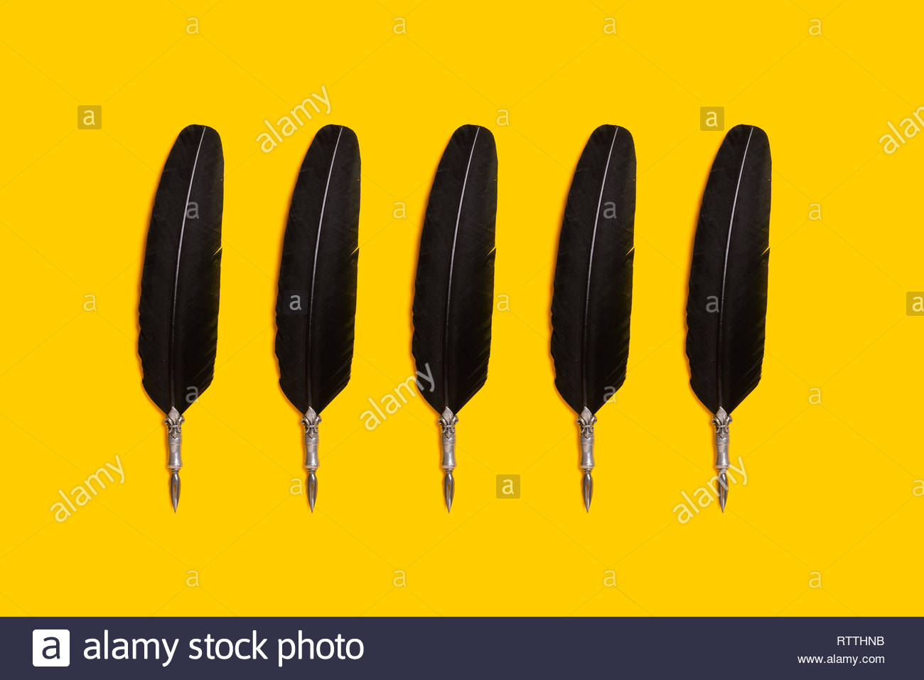 Black quill pens organized in a row over yellow background Stock 1300x867
