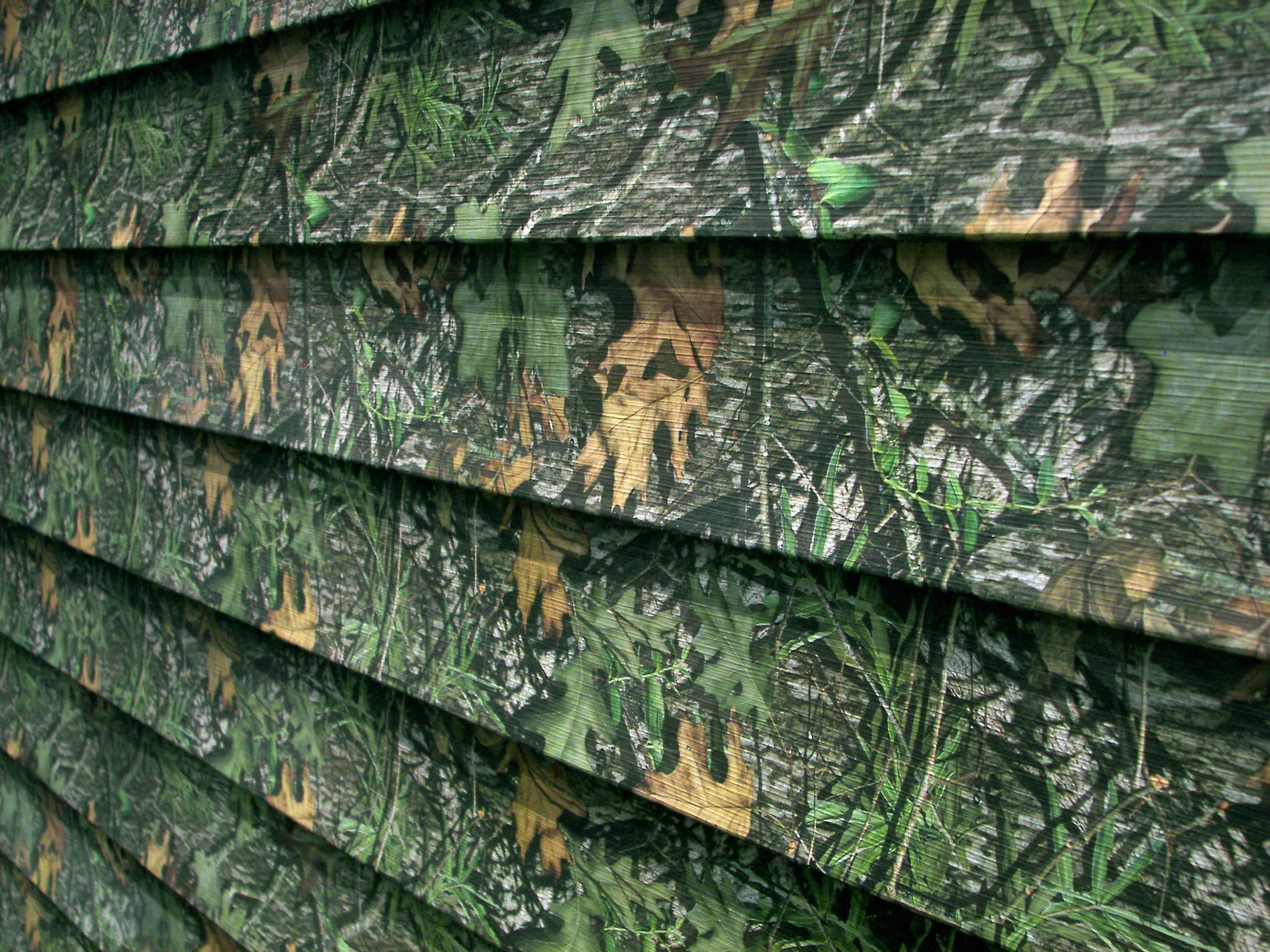 Displaying 20 Images For   Girl Mossy Oak Camo Backgrounds 2592x1944