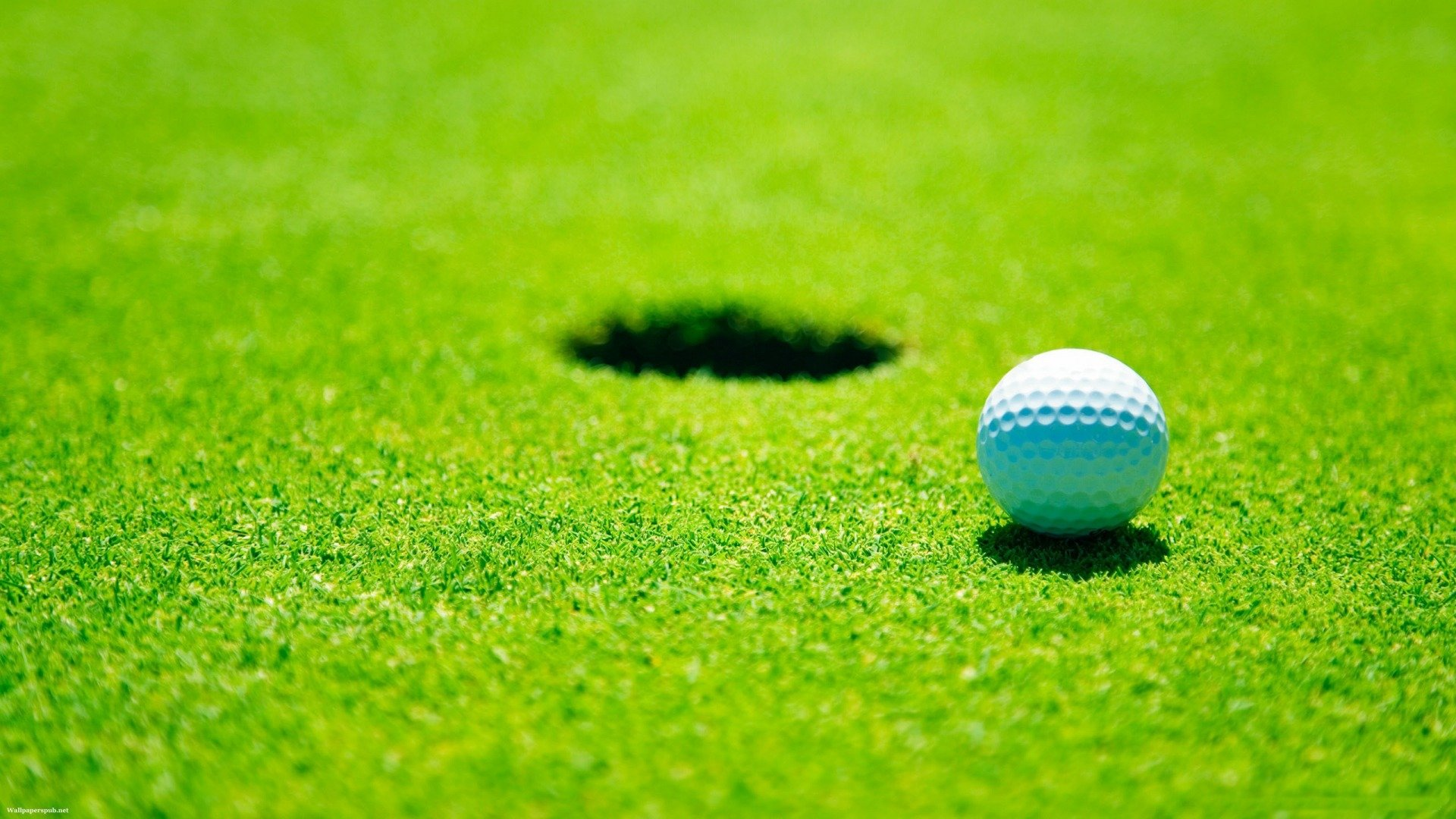 Golf Course And Hole Wallpapers 1920x1080 HD Golf 1920x1080