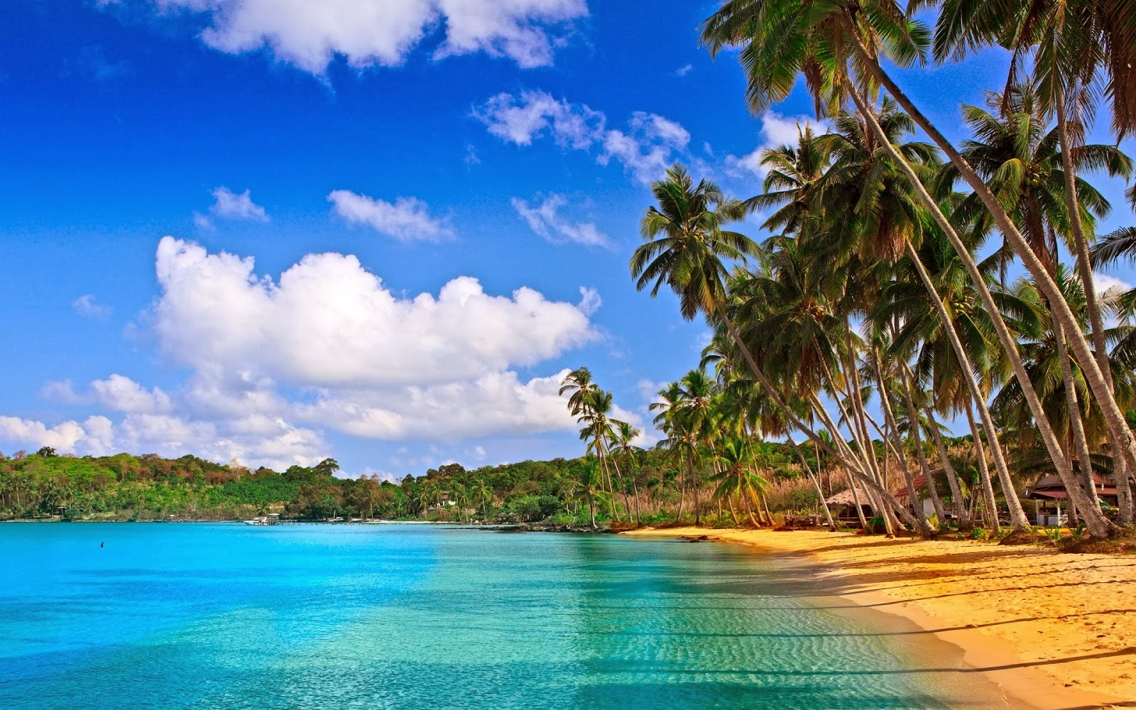 Goa Wallpapers HD Backgrounds Images Pics Photos Download 1600x1000