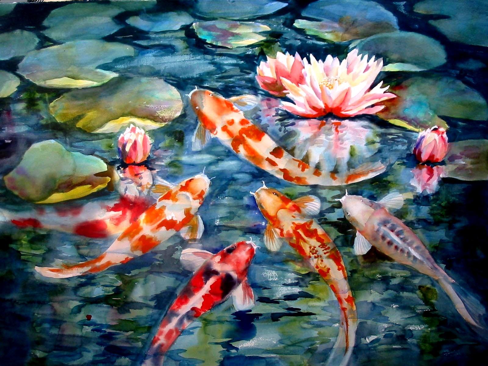 34 Hd Koi Fish Wallpaper On Wallpapersafari