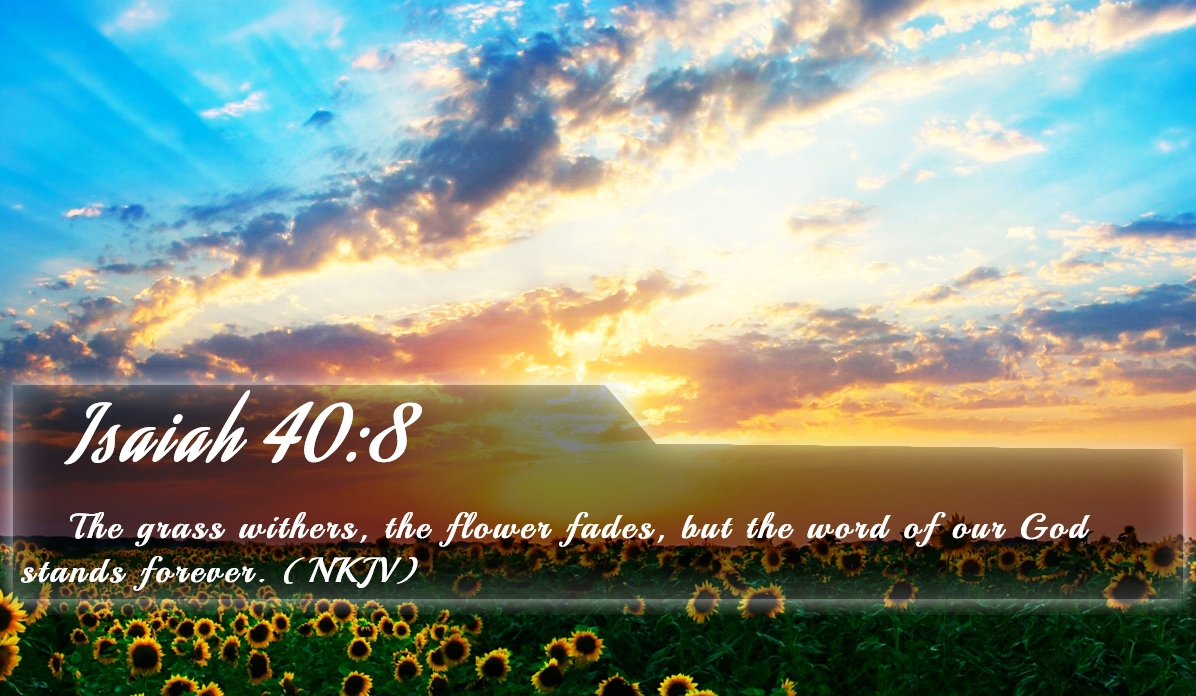 christian screensavers wallpaper with verses wallpapersafari