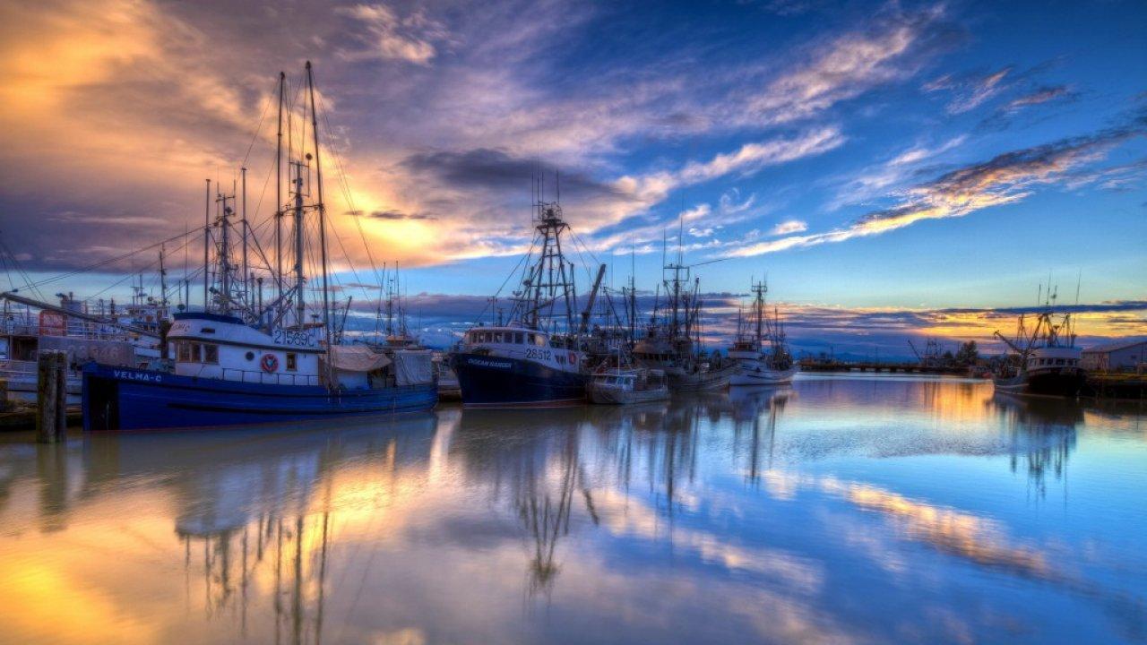 The Fishing Fleet Docked Harbor Boats Wallpaper High 1280x720