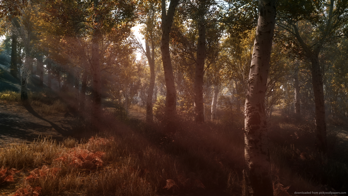 skyrim hd wallpapers 1366x768 - photo #13